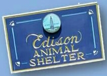 Come meet our shelter pets!
