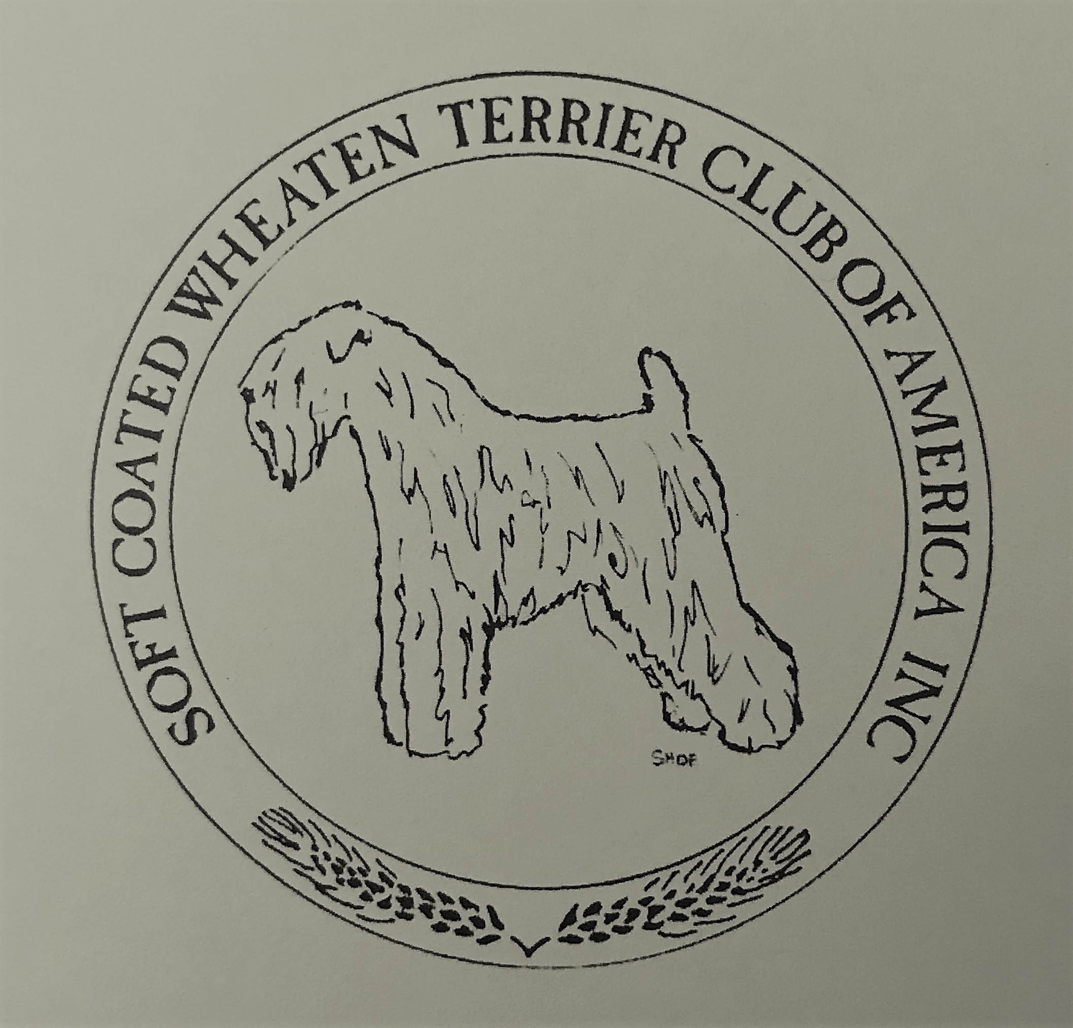 Pets for Adoption at Soft Coated Wheaten Terrier Club of America, in ...