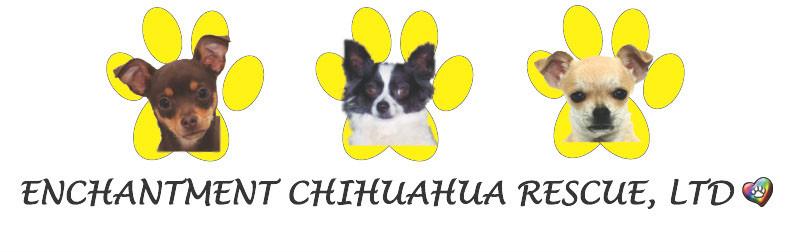 Enchantment Chihuahua Rescue LTD