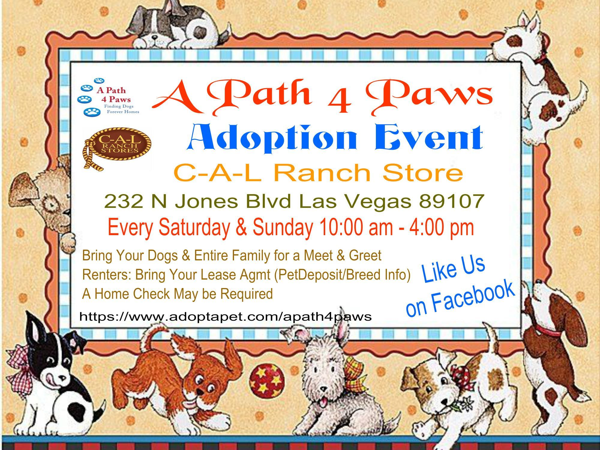Pets for Adoption at Adopt A Rescue Pet in Las Vegas NV