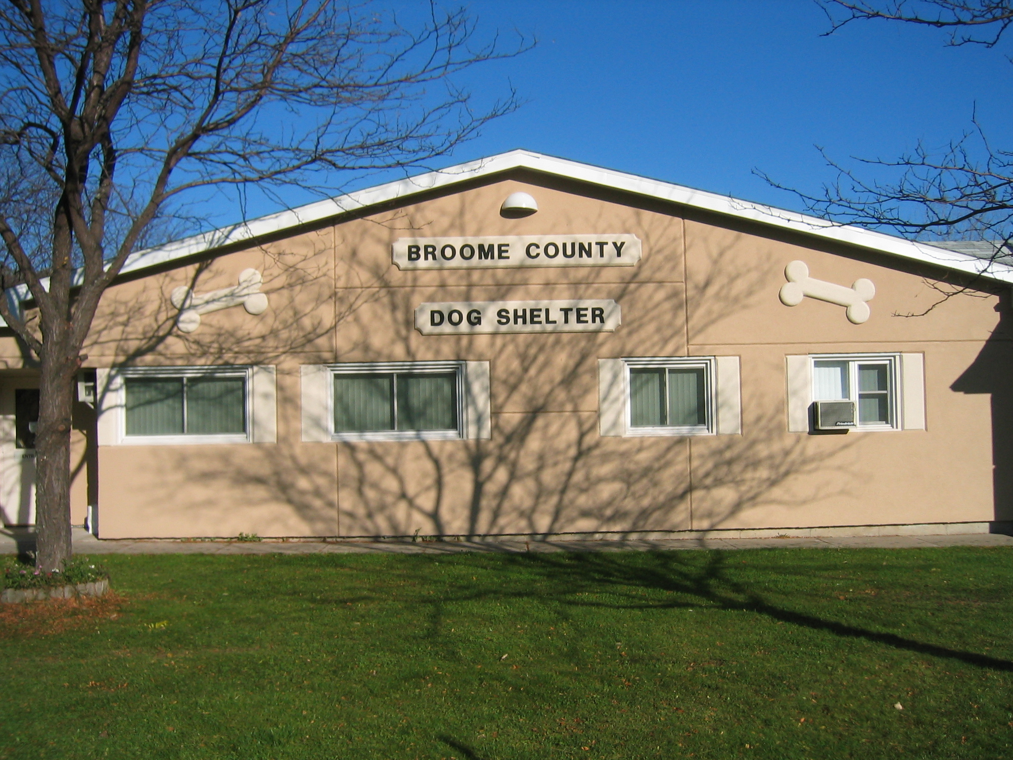 Broome County Dog Shelter
