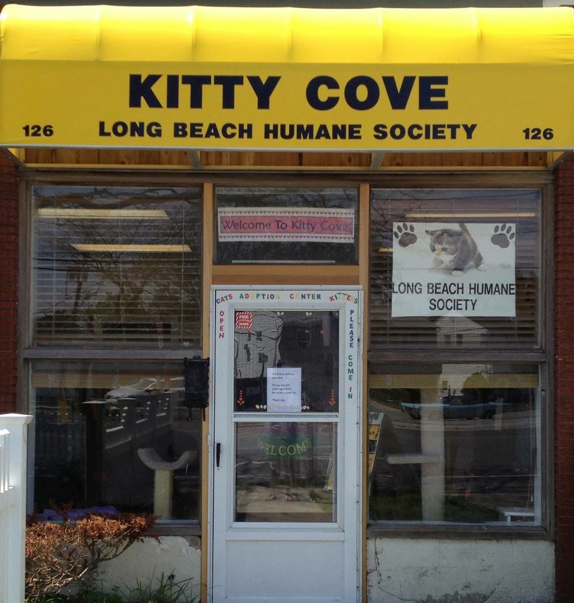 Long Beach Humane Society/Kitty Cove