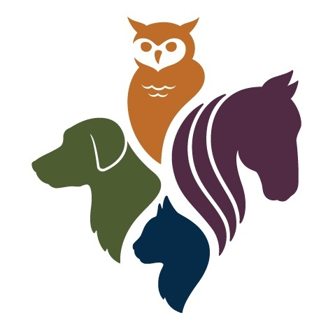 Pets for Adoption at Erie County SPCA, in West Seneca, NY