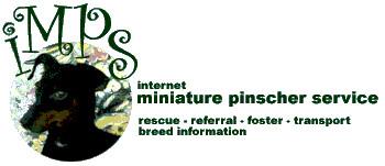 IMPS - Internet Miniature Pinscher Service, Inc. - NY Region