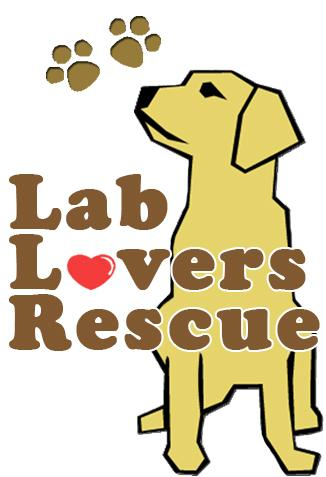 Lab Lovers Rescue