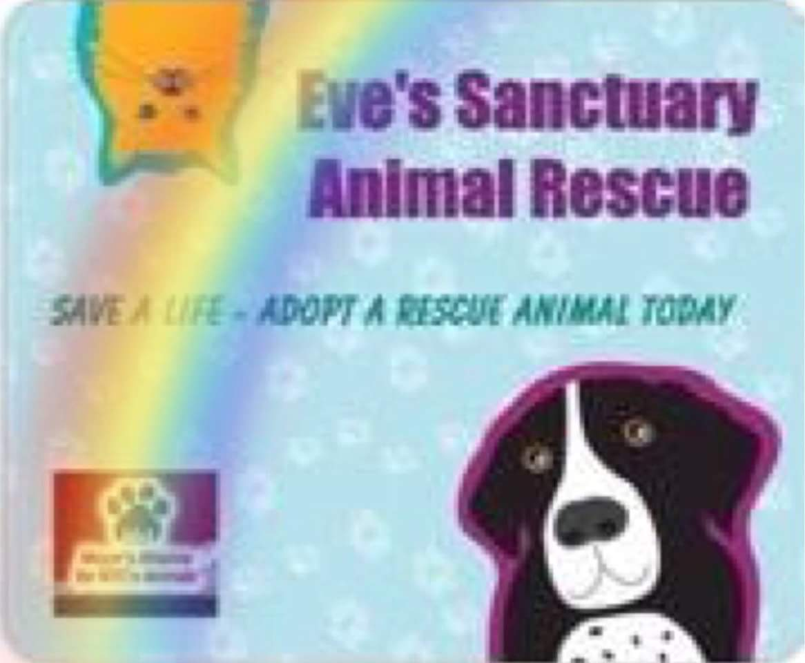 Eve's Sanctuary - Animal Rescue