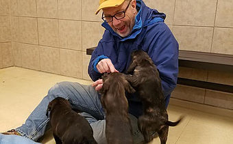 Volunteer Dave is socializing the new puppies.