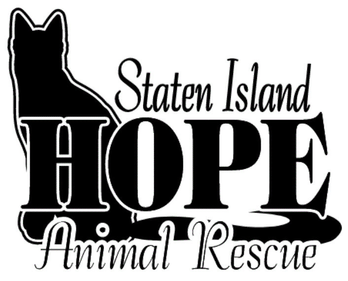 Pets For Adoption At Staten Island Hope Animal Rescue In Staten