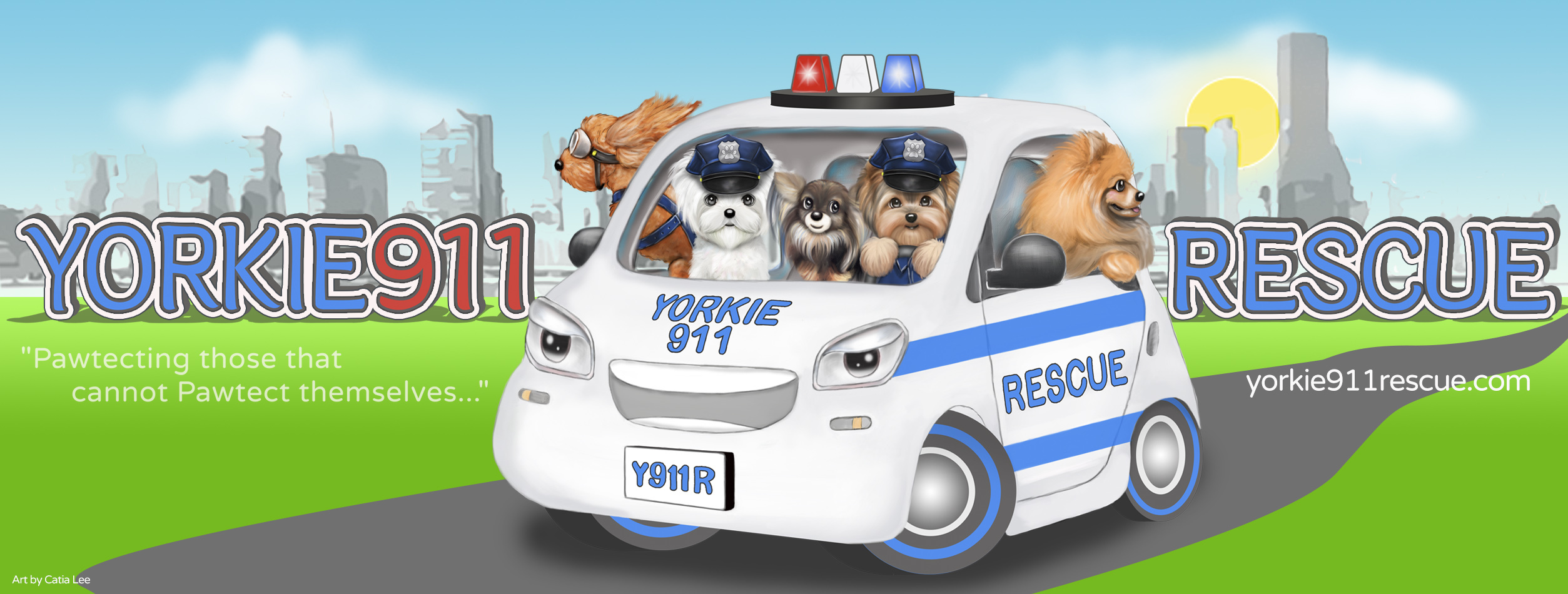 Pets For Adoption At Yorkie911 Rescue Inc In Deer Park Ny