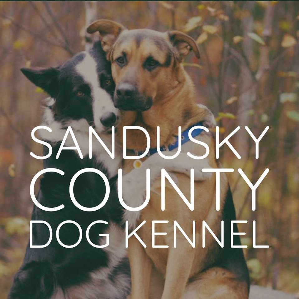 Sandusky County Dog Shelter