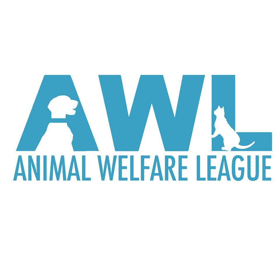 Pets for Adoption at Animal Welfare League of Trumbull