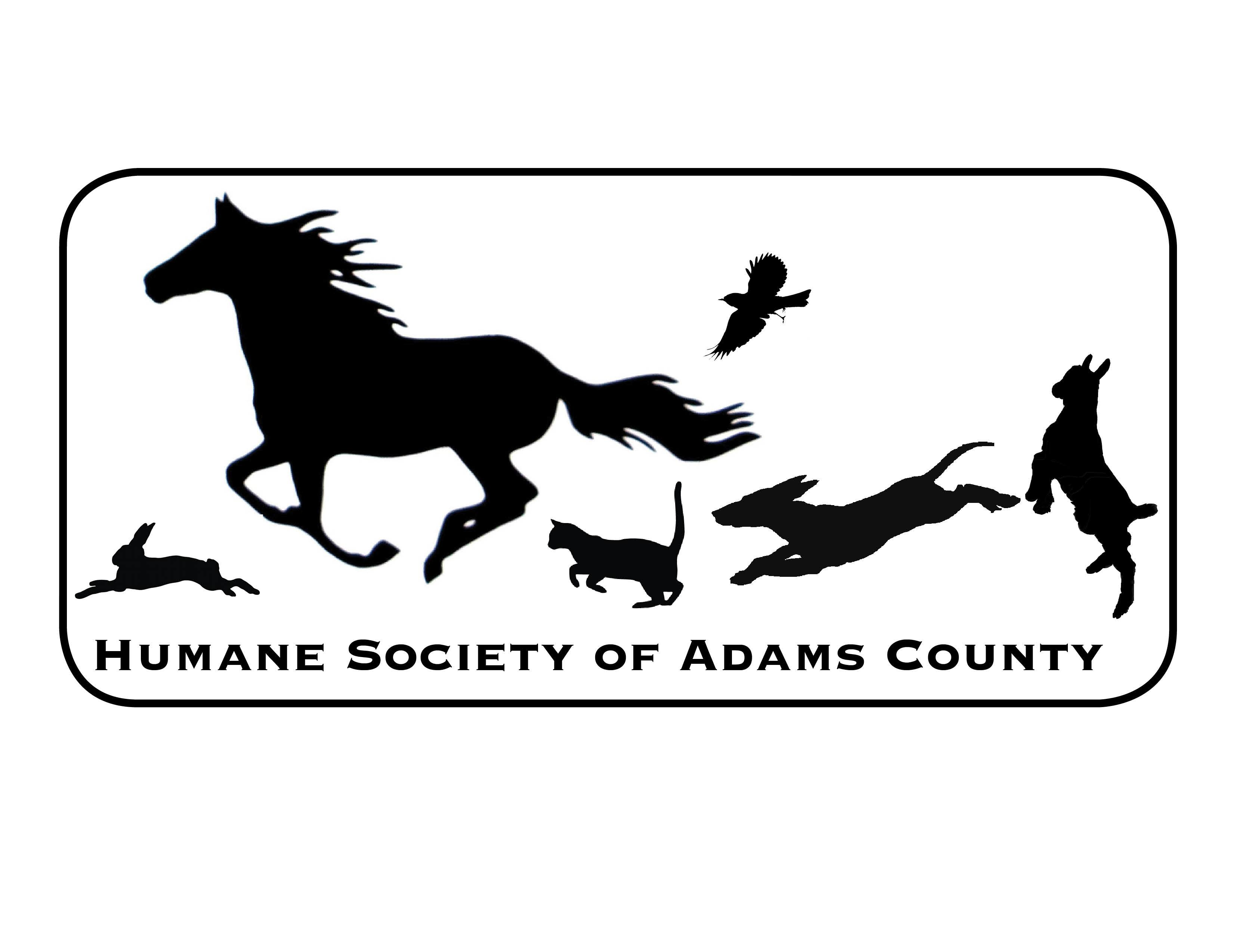 Pets For Adoption At Humane Society Of Adams County Inc In West