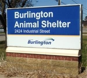 Burlington Animal Shelter