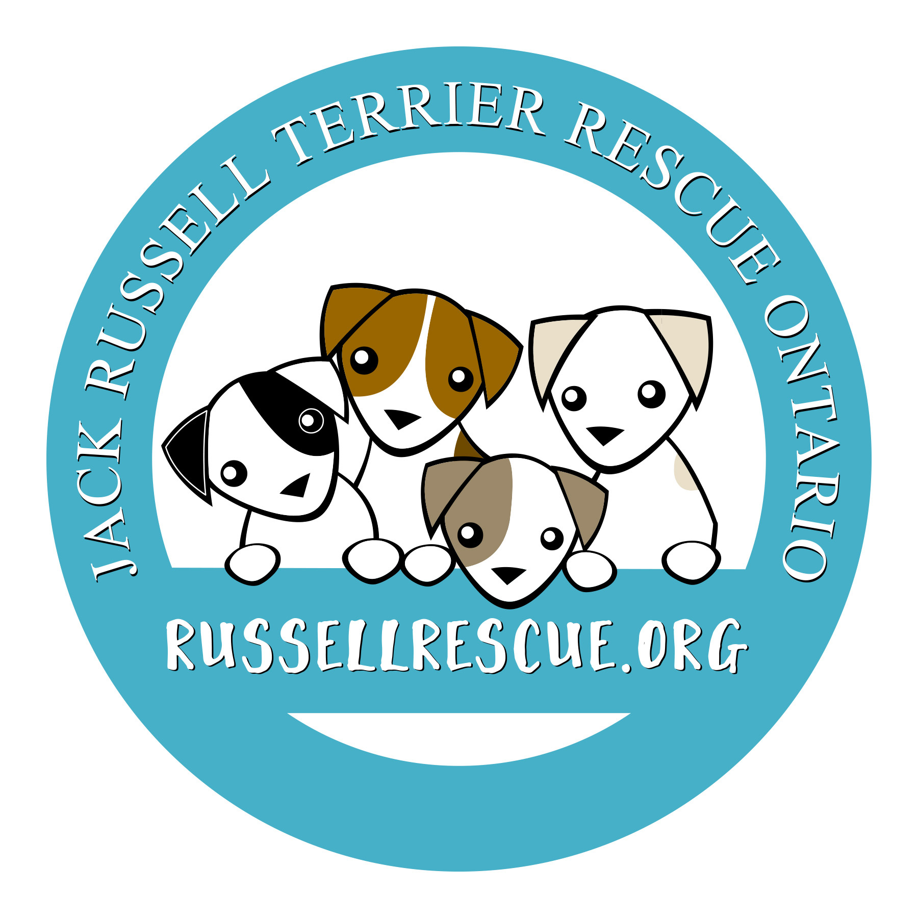 Jack Russell Terrier Rescue Ontario (JRTRO)
