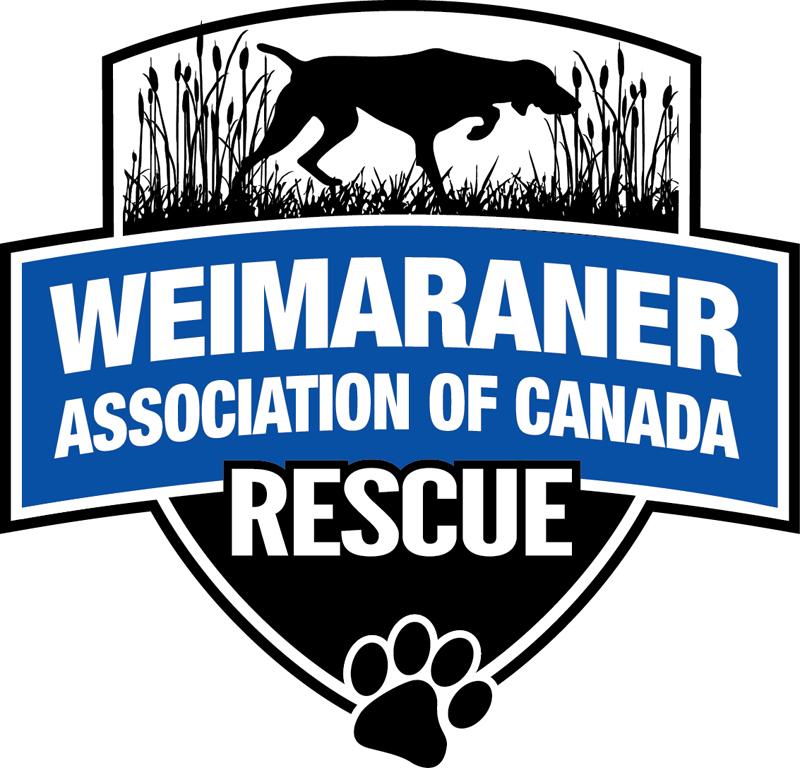 Weimaraner Assoc of Canada