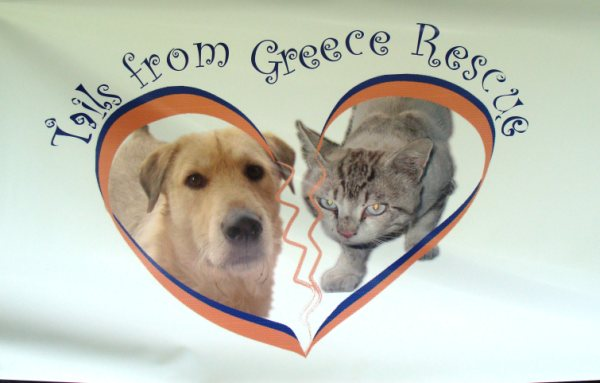 TAILS FROM GREECE RESCUE