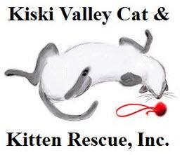 Kiski Valley Cat & Kitten Rescue, Inc.