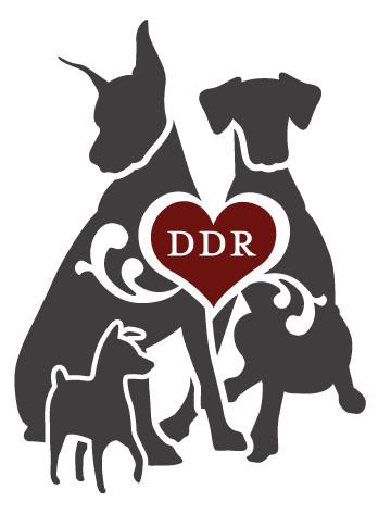Distinguished Dobermans Rescue