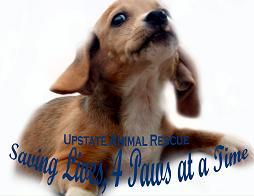 Upstate Animal Rescue Foundation of South Carolina