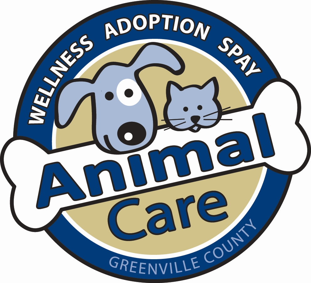 Pets for Adoption at Greenville County Animal Care, in