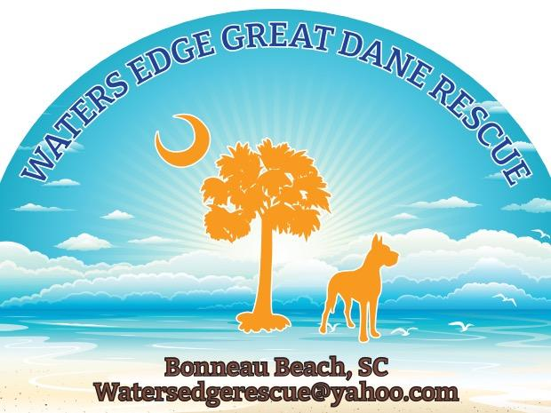 Pets For Adoption At Waters Edge Great Dane Rescue Inc In