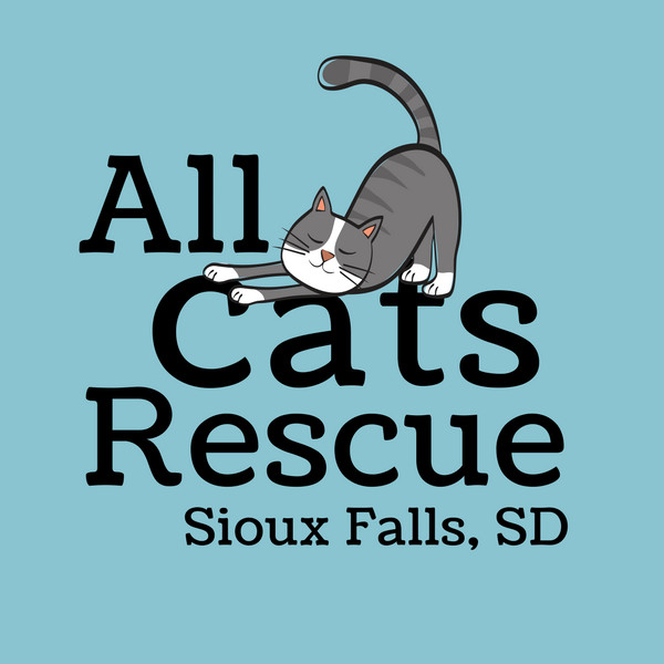 All Cats Rescue