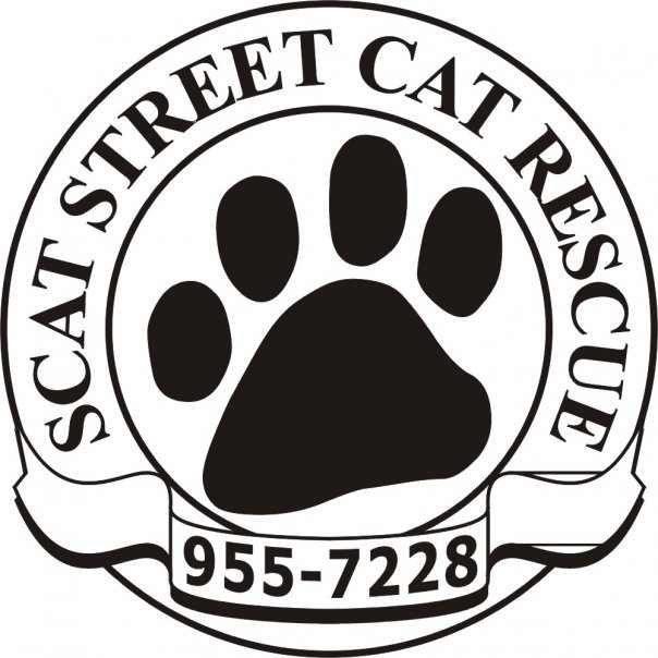 SCAT Street Cat Rescue Program