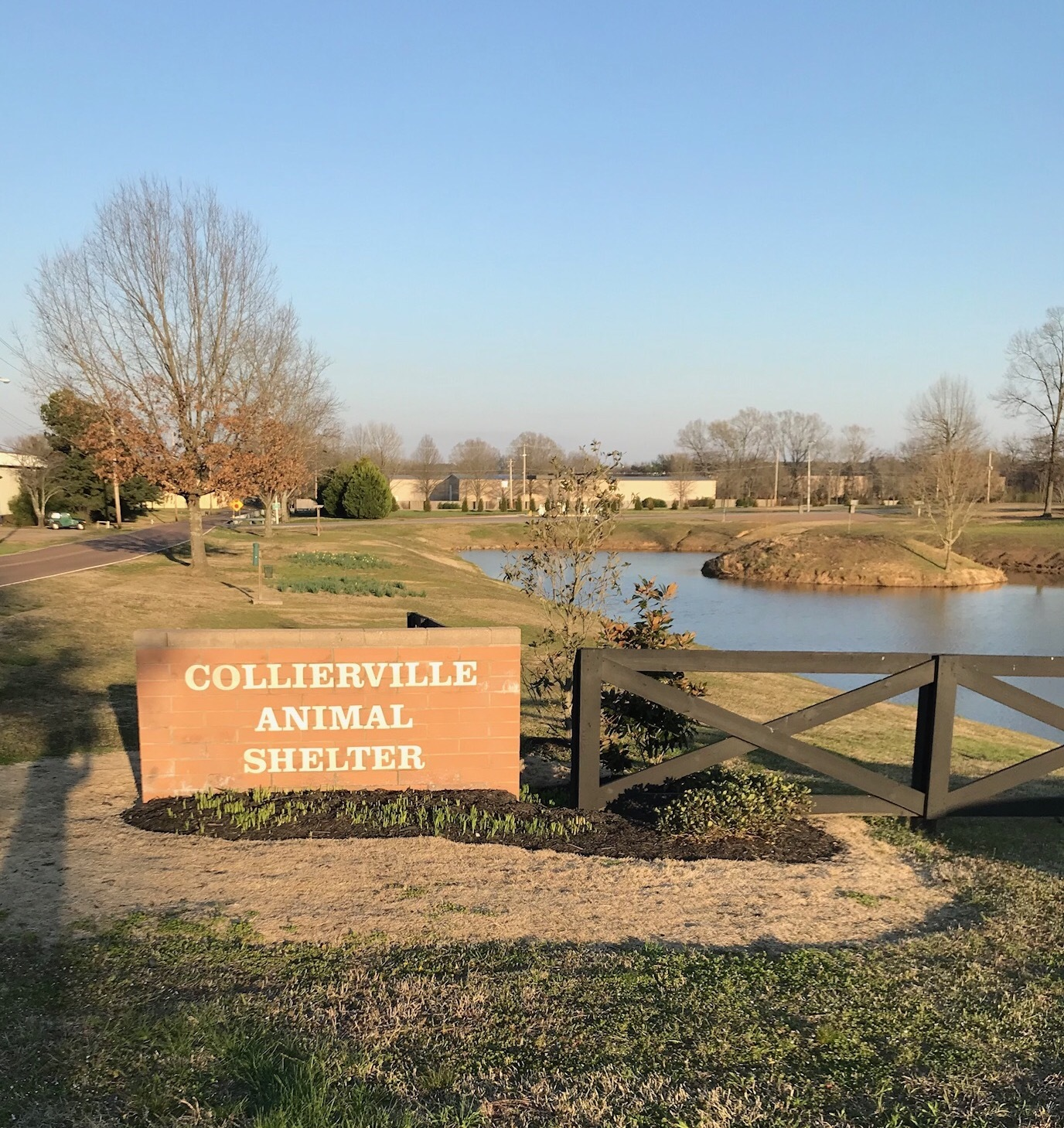 Collierville Animal Services