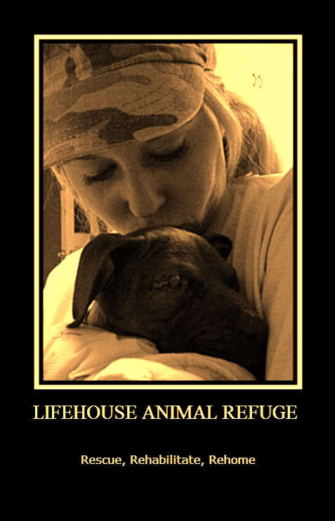 Life House Animal Refuge And Rehabilitation