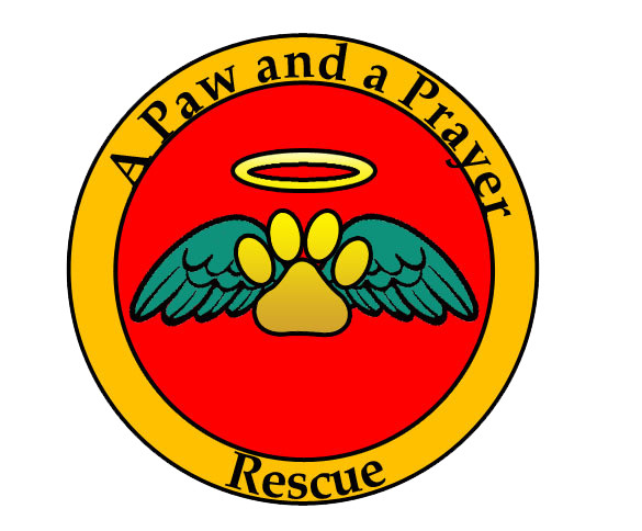 Pets For Adoption At A Paw And A Prayer Rescue In Chattanooga Tn