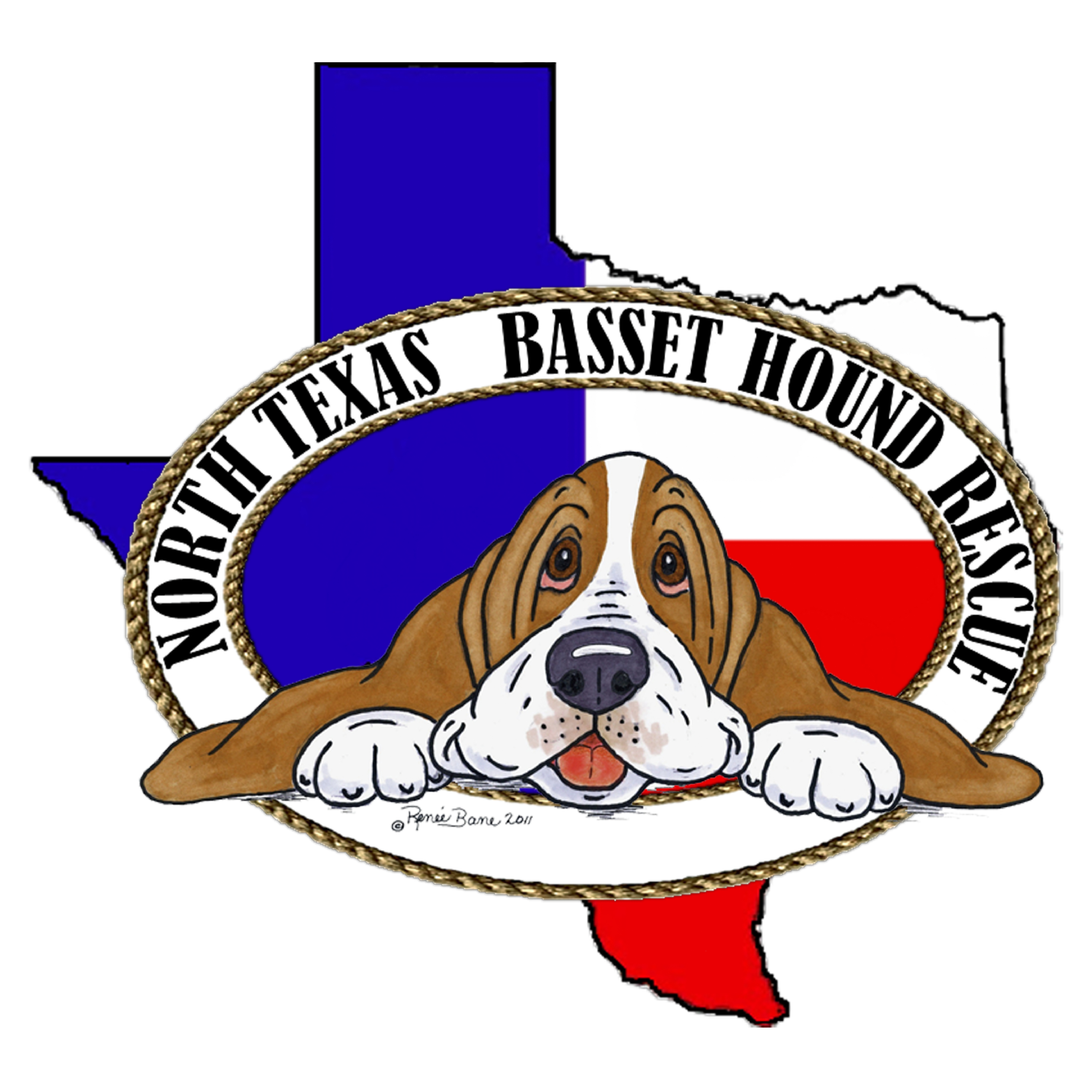 """""""Giving Bassets a Second Chance"""" since 1984"""