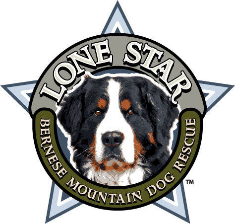 Lone Star Bernese Mountain Dog Rescue Inc