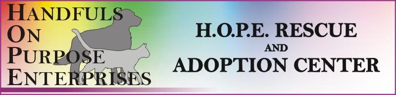 Handfuls on Purpose / HOPE
