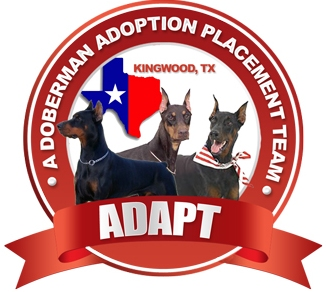 ADAPT- A Doberman Adoption Placement Team
