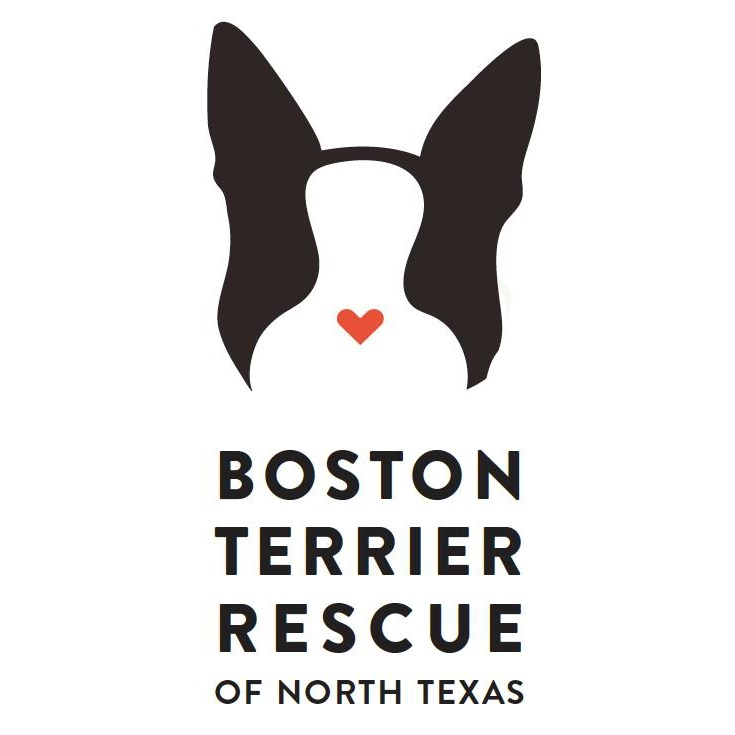 Boston Terrier Rescue of North Texas