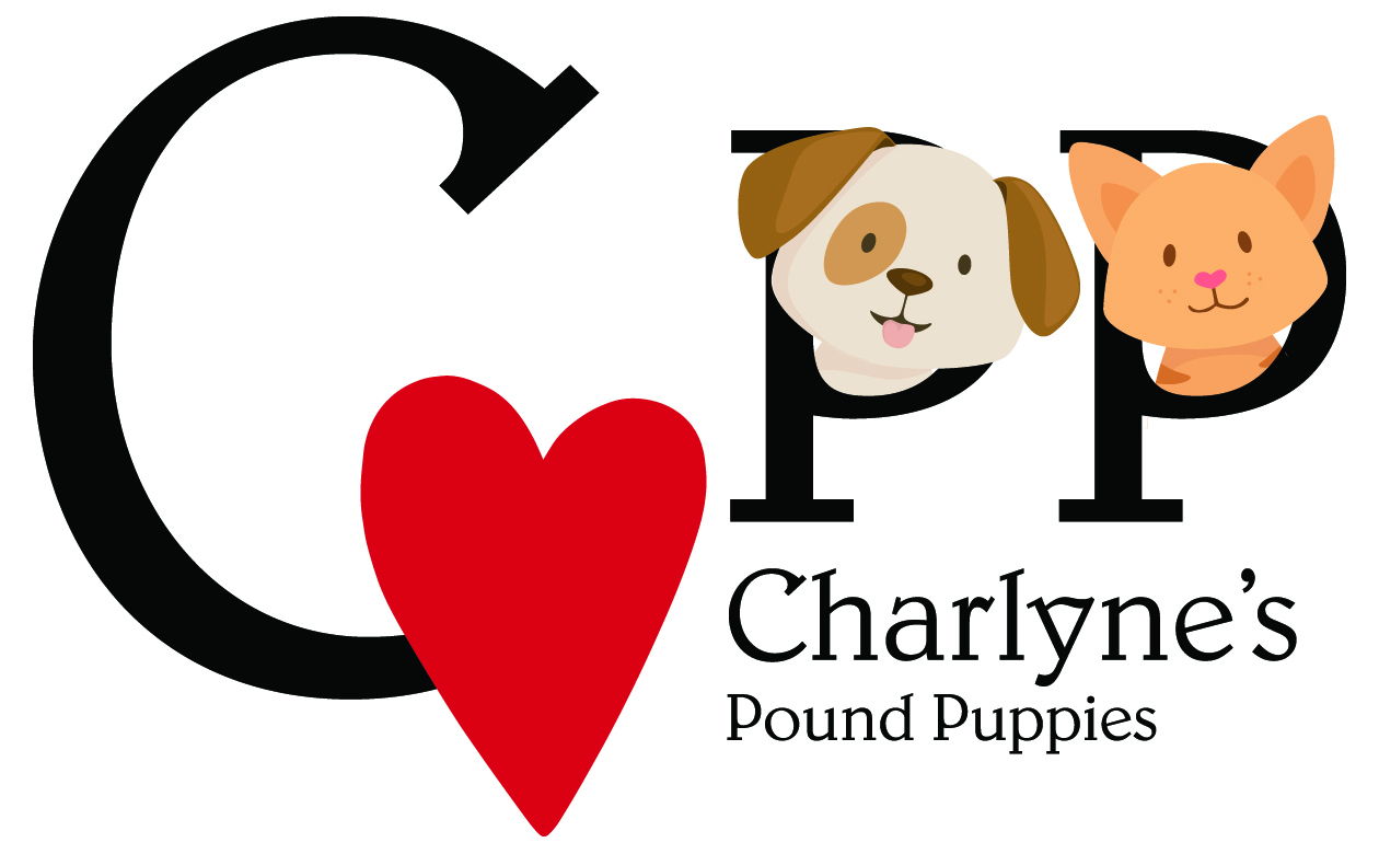 Charlynes Pound Puppies