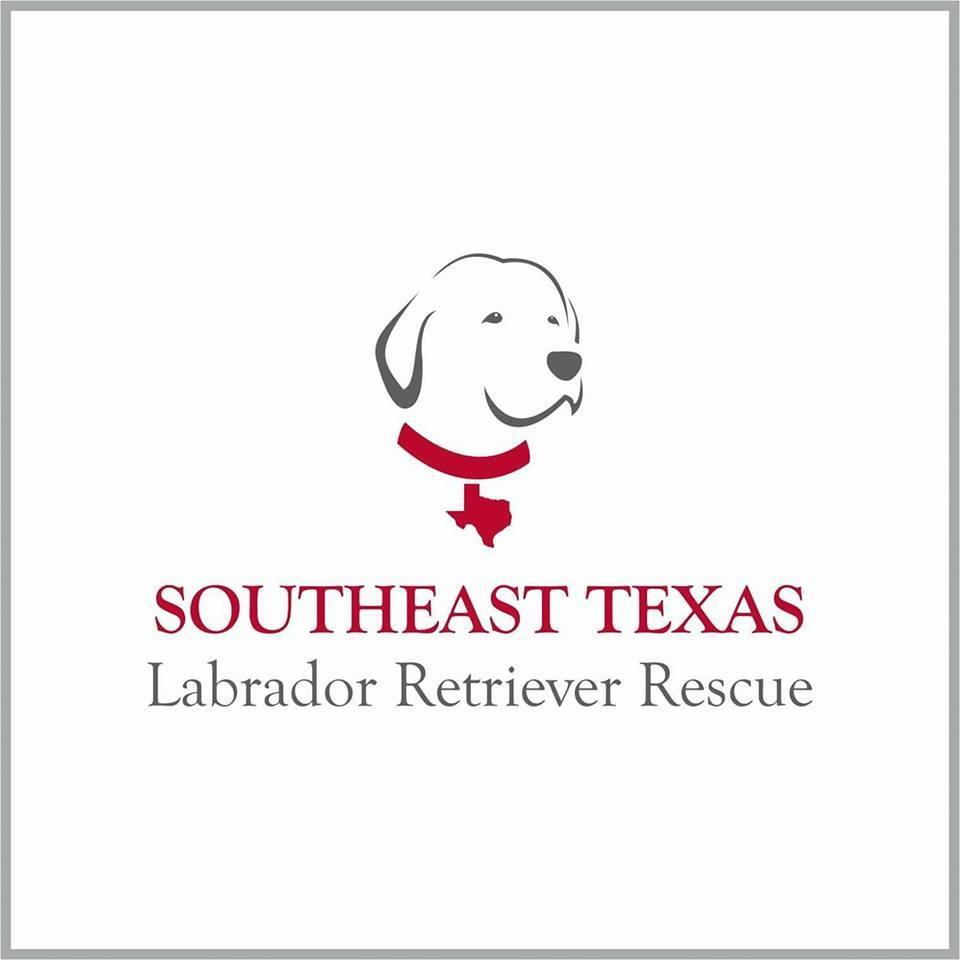 Southeast Texas Labrador Retriever Rescue