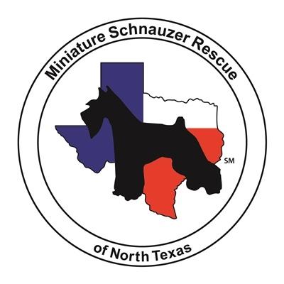 Miniature Schnauzer Rescue of North Texas
