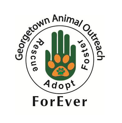 Georgetown Animal Outreach