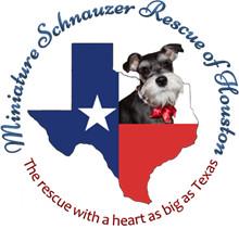 Miniature Schnauzer Rescue of Houston