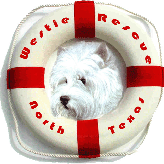 Westie Rescue North Texas