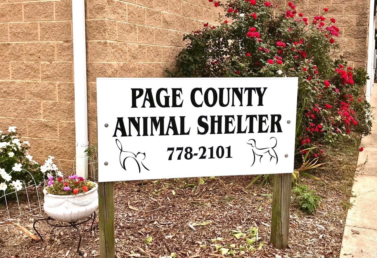 Page County Animal Shelter