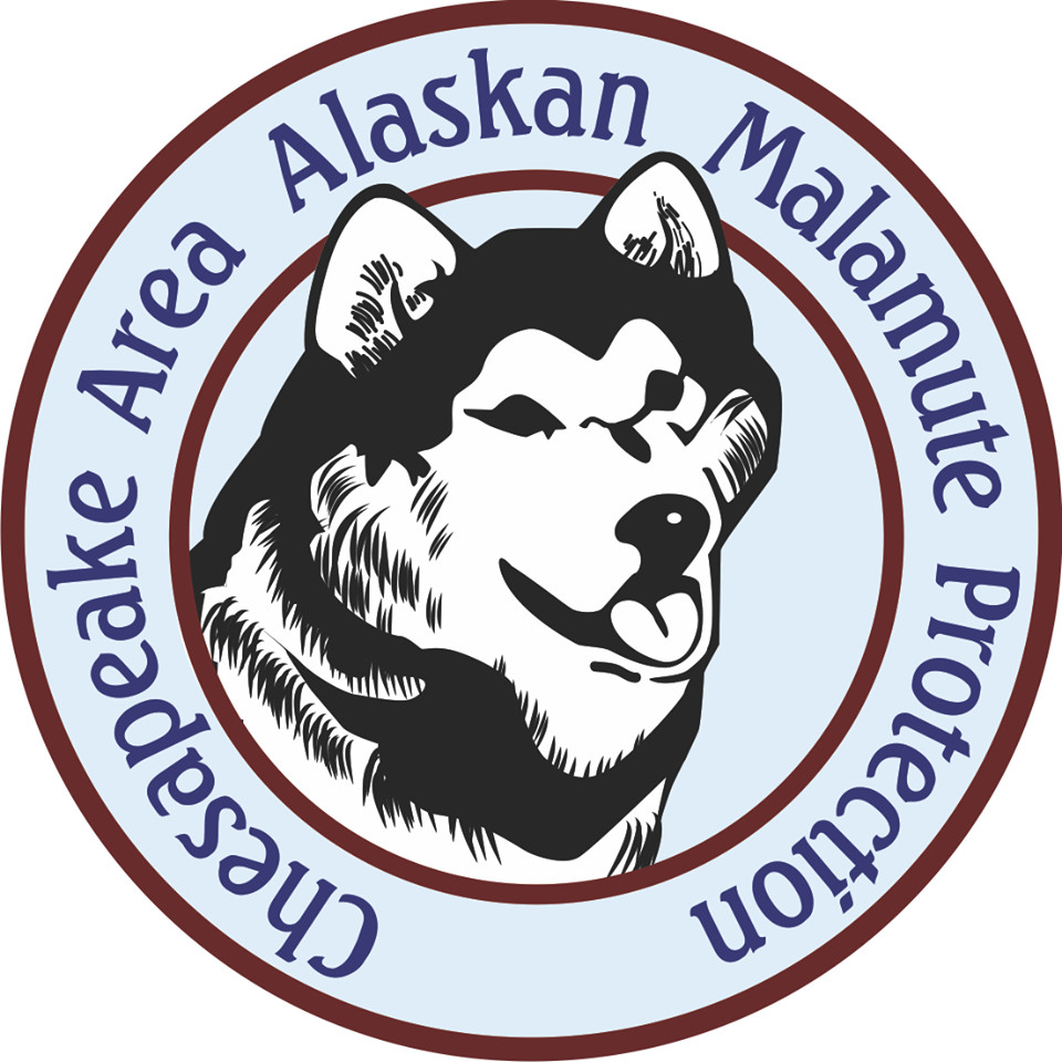 Chesapeake Area Alaskan Malamute Protection