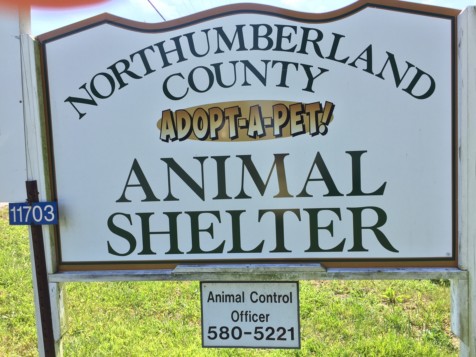Northumberland County Animal Shelter
