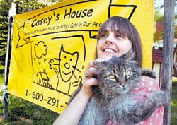 Caseys House, Inc.