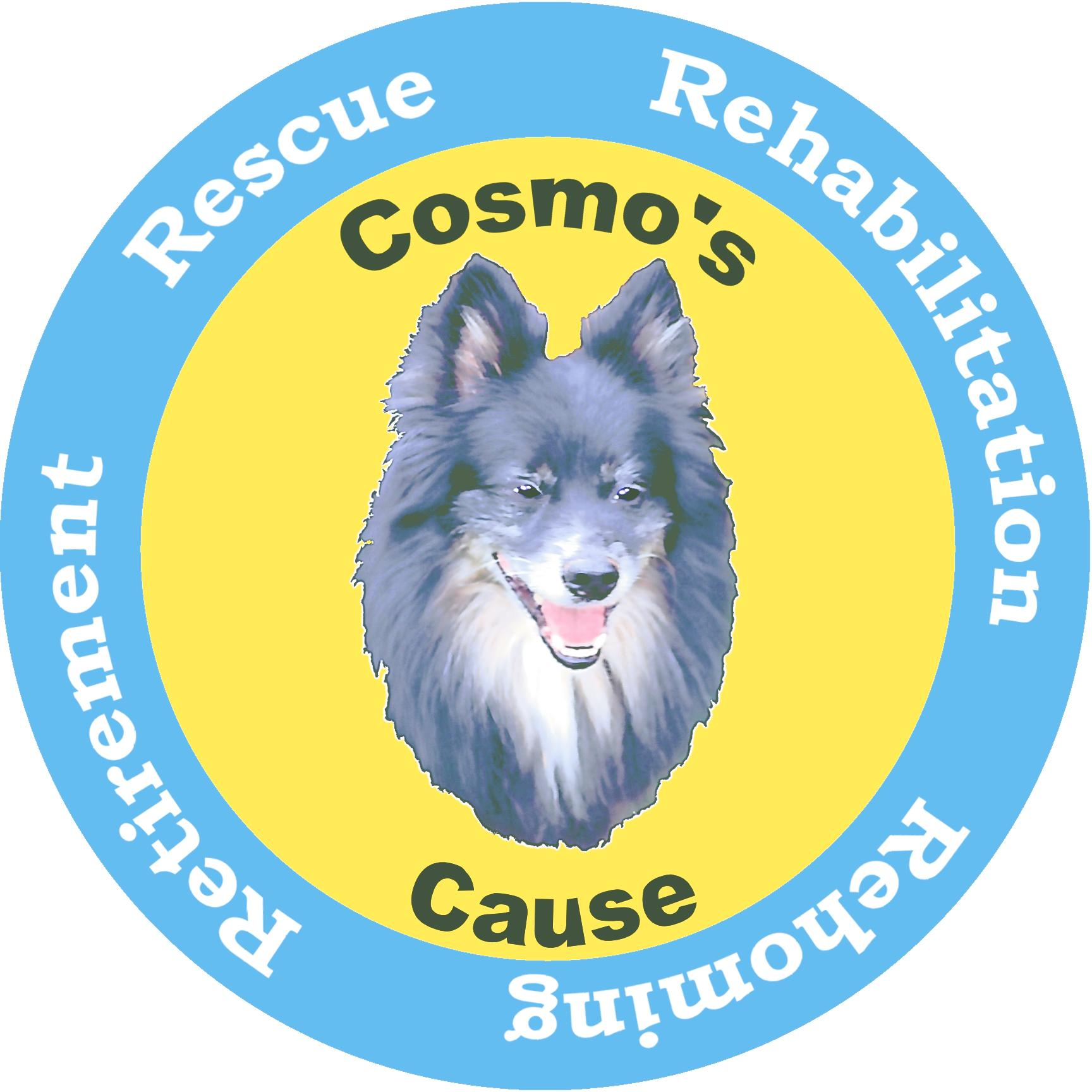 Cosmo's Cause
