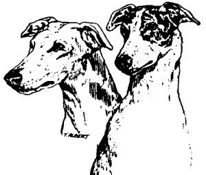 Greyhound Pets, Inc. ~ www.greyhoundpetsinc.org