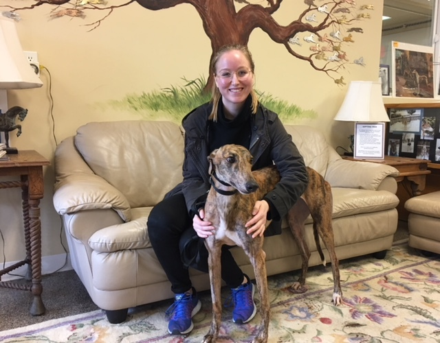Another happy greyhound adoption!
