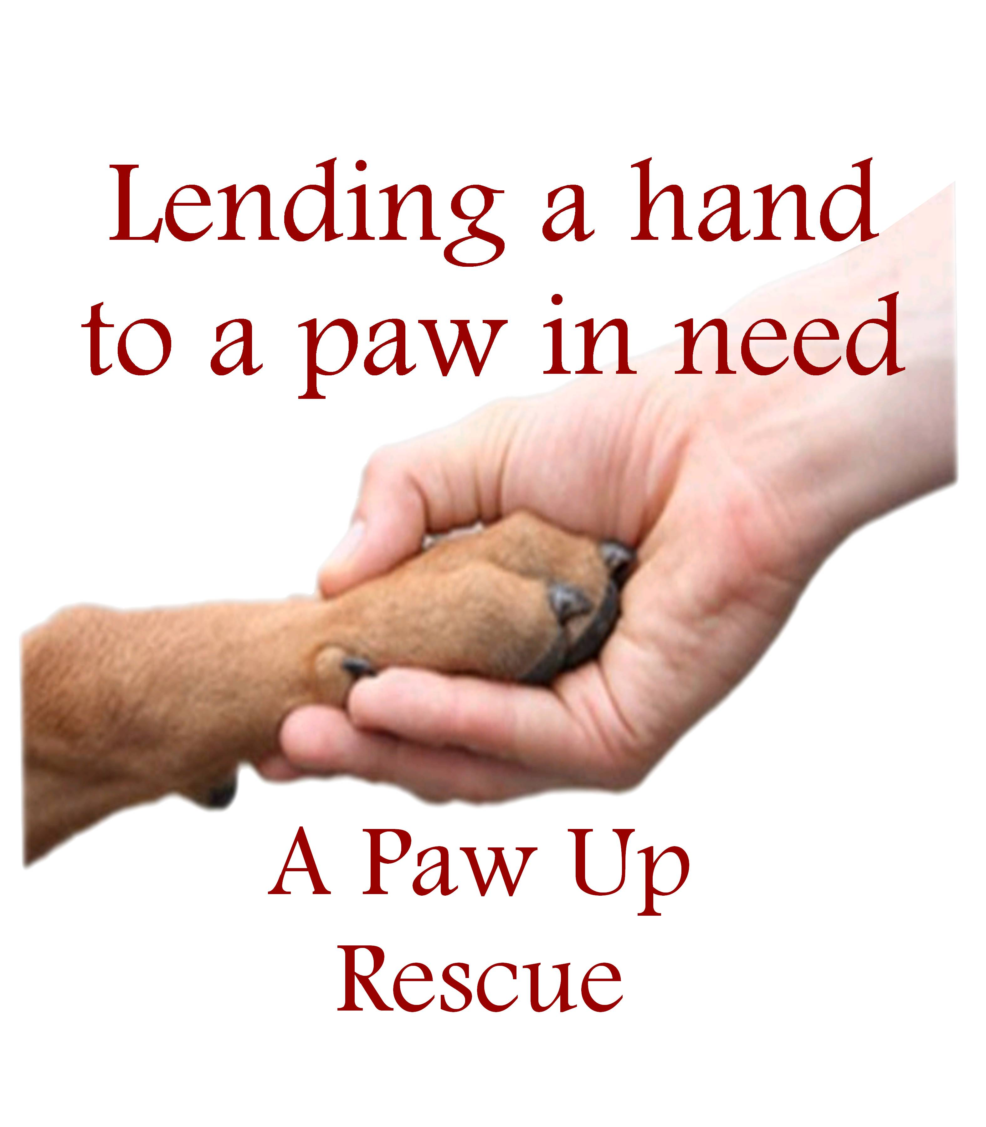 A Paw Up Rescue
