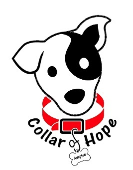 Collar of Hope